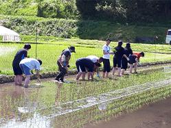 民泊・農業体験イメージ写真