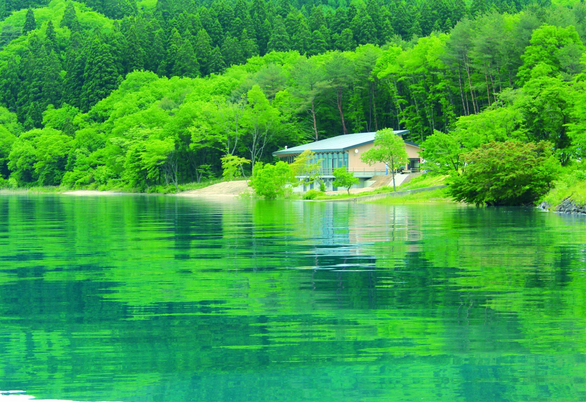 写真:田沢湖クニマス未来館3