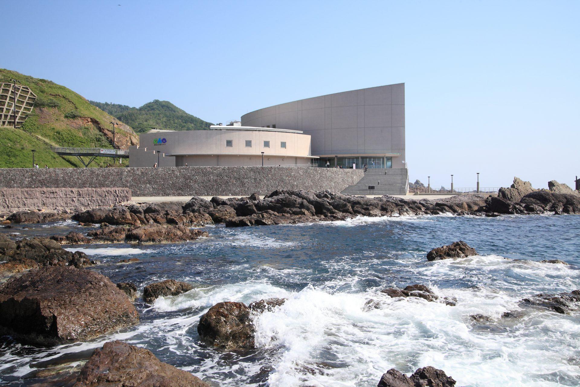 写真:男鹿水族館 GAO3